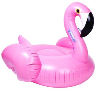 Flamingo Floater (Pink) - picture 2