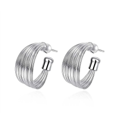 La Vie Sterling Silver Multi line Earrings (Silver)