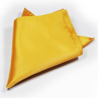 Tieline Pocket Square (Gold) - picture 2