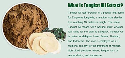 tongkat ali effects on prostate