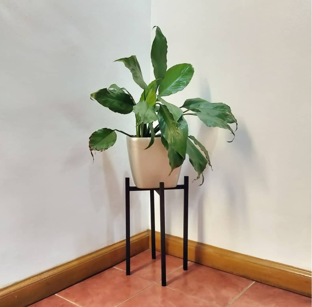 Picture of: Metal Plant Stand Mid Century Modern Minimalist Plant Stand For Planters And Pots Lazada Ph