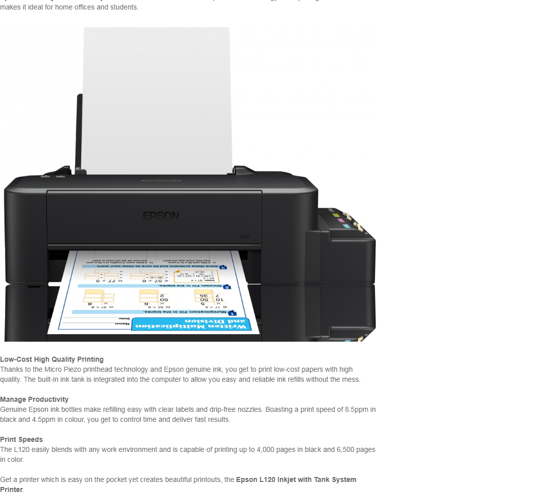 Epson L120 Single Function Printer (Black)